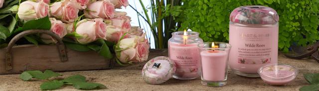 Heart & Home Wilde Roos geurkaarsenserie